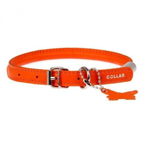кожаные ошейники для собак collar с адресником купить в москве