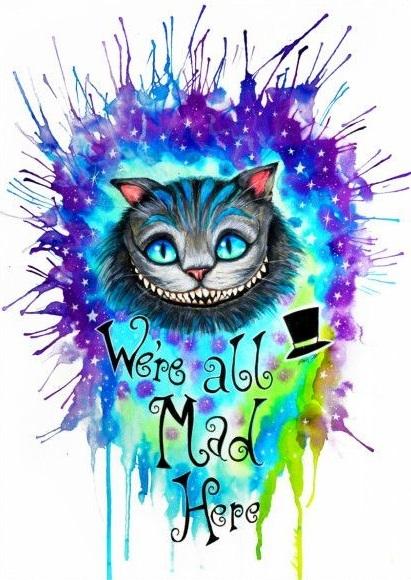 Картина раскраска по номерам 40x50 Магический кот– купить ...