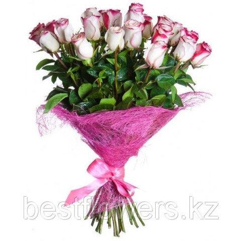 Букет из 25 роз Свитнесс (Голландия)