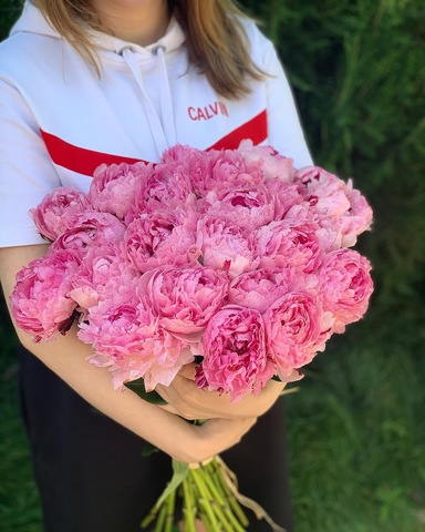 Розовые пионы (поштучно)