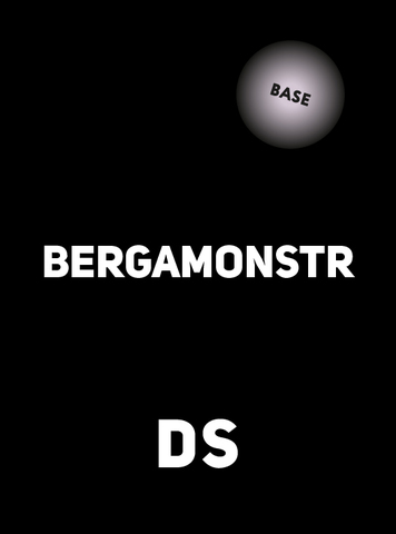 Аксессуар DS BASE BERGAMONSTR 100