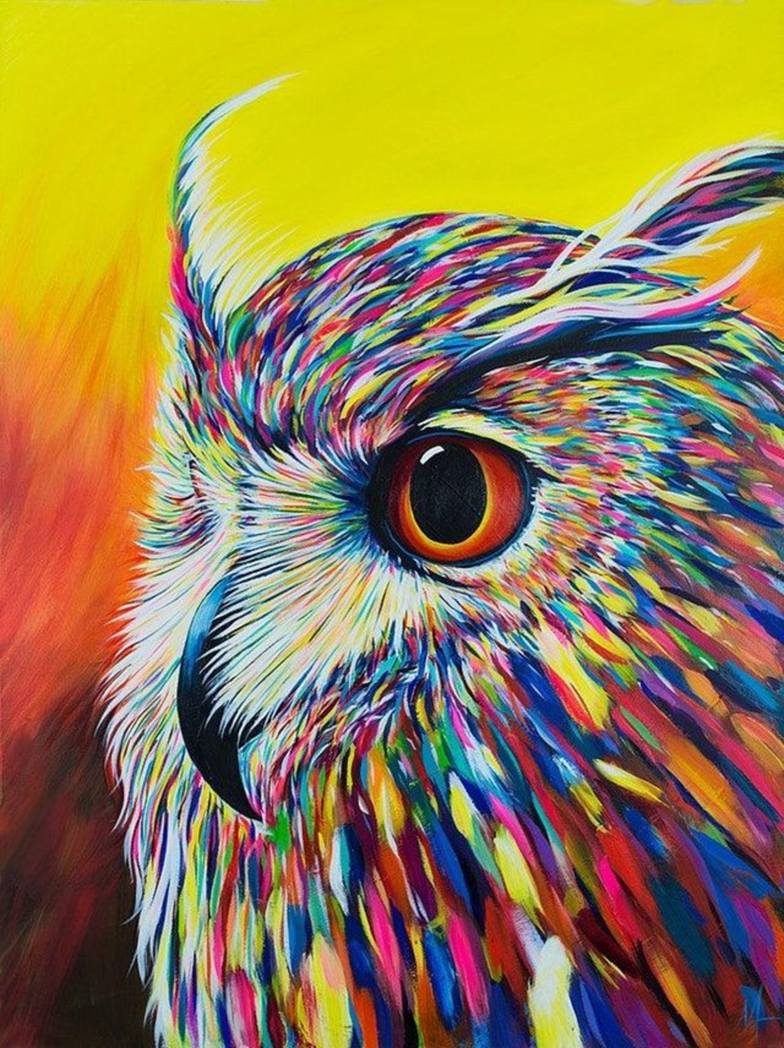 Картина раскраска по номерам 40x50 Разноцветная сова ...