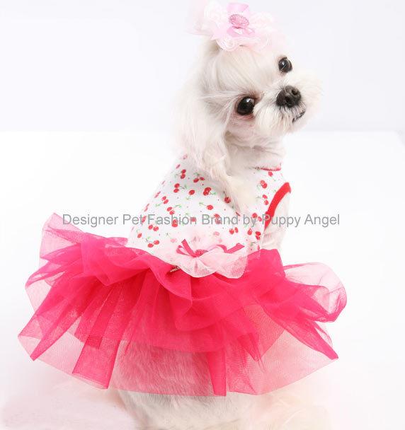 платье с юбкой пачкой для собак