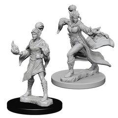Pathfinder Deep Cuts Unpainted Miniatures - Elf Female Sorcerer