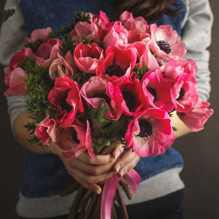 Купить анемоны розовые в Перми букет