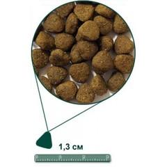 ARDEN GRANGE ADULT DOG CHICKEN & RICE 15 кг