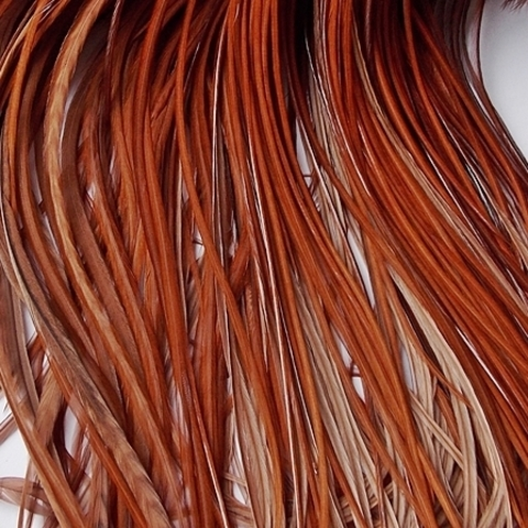 Перо петуха фасованное - Dyed Brown
