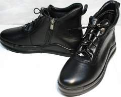Купить кеды сникерсы женские Evromoda 375-1019 SA Black