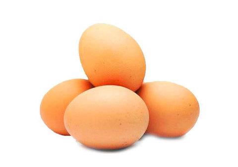 Яйцо куриное Активита С0, 10шт