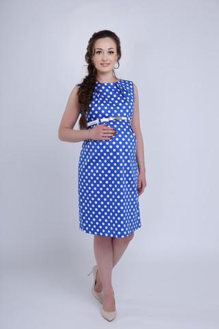 Платье 06198 синий в горох