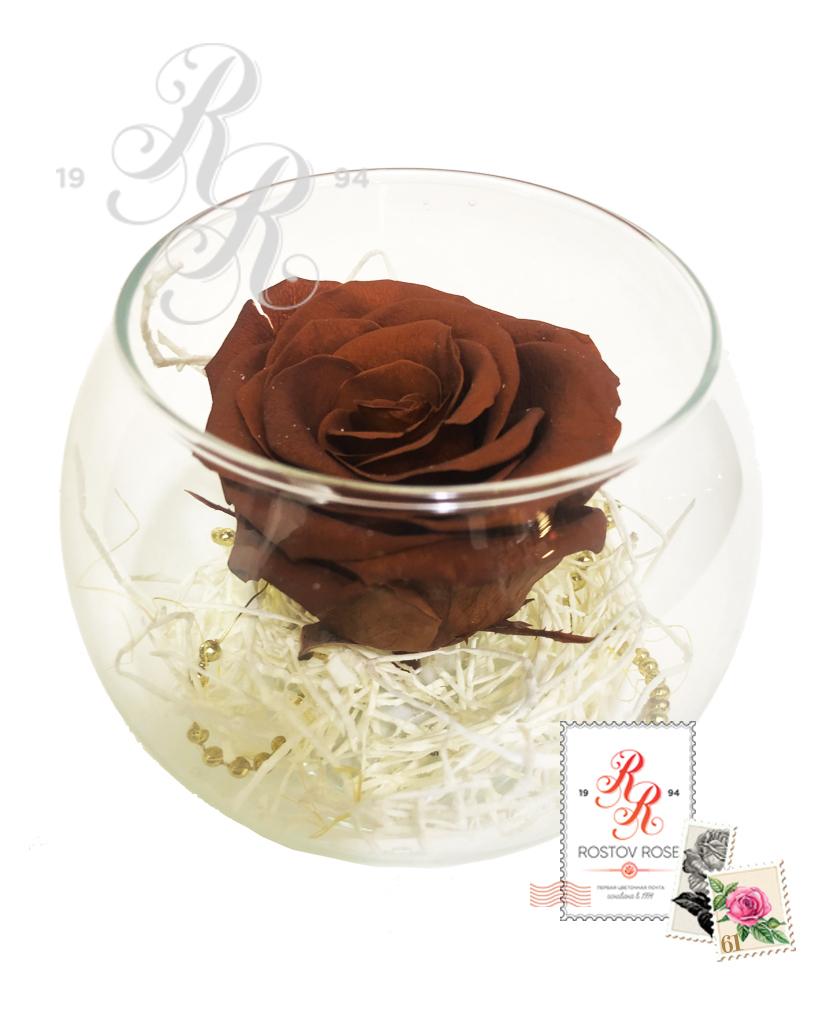 Роза коричневая в бокале