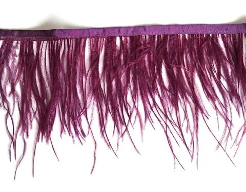 Тесьма  из перьев страуса h 10-15 см., сливовый