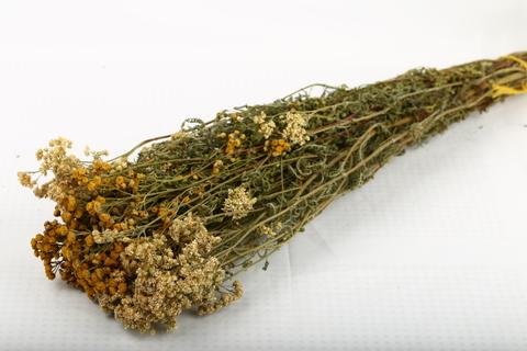 Травяной веник Тысячелистник и пижма