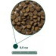 ARDEN GRANGE WEANING/PUPPY 15 кг