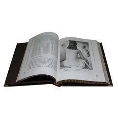 Завтрак у Sotheby`. Мир искусства от А до Я. Филип Хук.