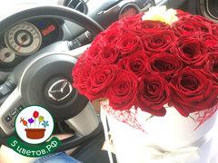 50 красных и 1 белая роза в коробке