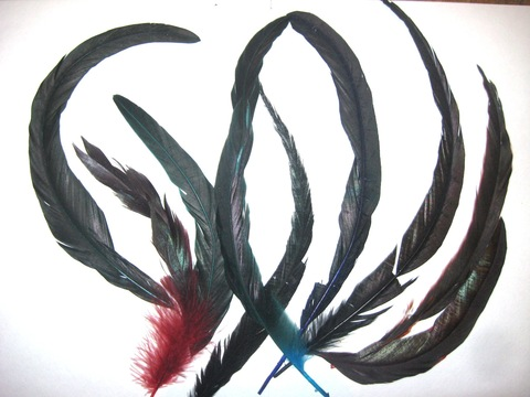 Перья петуха, 30 см.(10 шт.), Уценка (выбрать цвет)