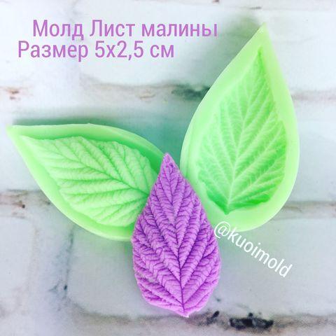 Молд Лист малины