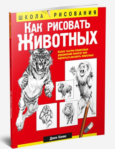 Фото Как рисовать животных