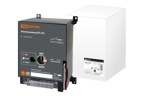 Электропривод ЭП-250 ВА89 TDM