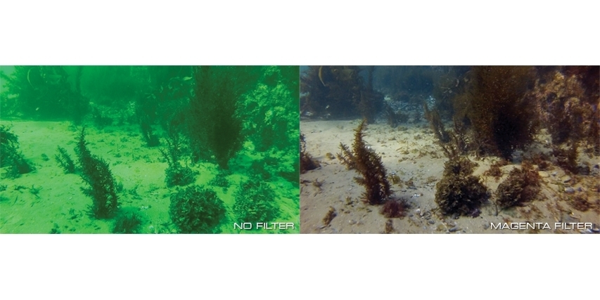 Набор фильтров PolarPro Aqua 3-Pack HERO 5/6/7 Black фото под водой сравнение