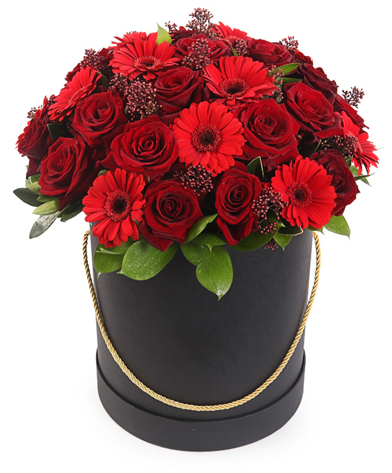 думаю, бордовые розы в горшочках фото средневековых