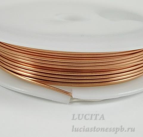 Проволока медная 0,8 мм, цвет - медь, примерно 3 метра (DSCN9429_exposure)