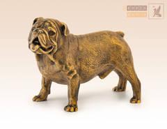 Собака Бульдог английский большой
