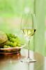 Набор бокалов для белого вина 2 шт 350 мл Riedel Grape@Riedel Riesling/Sauvignon Blanc