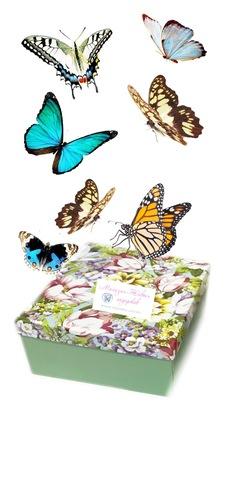 Салют из 7 бабочек