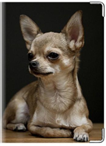 """Обложка для ветеринарного паспорта """"Чихуа-хуа"""""""