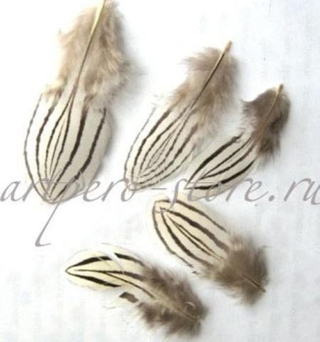 Перья серебряного фазана, 5-8см., 10 шт.