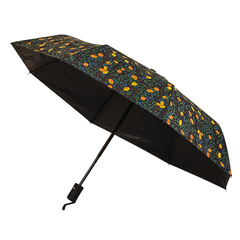 Зонт Lemon