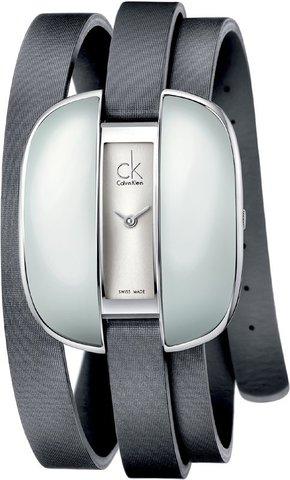 Купить Наручные часы Calvin Klein Treasure K2E23620 по доступной цене