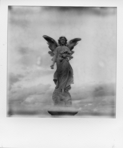 Polaroid-waverley cemetry (Eva Flaskas)