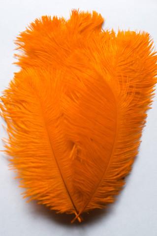 Перья страуса  декоративные  15-20 см. 50 шт, оранжевый