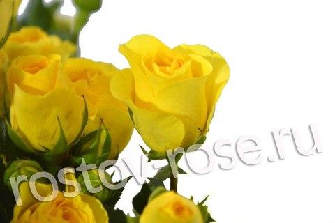 Букет кустовых роз Пальмадор