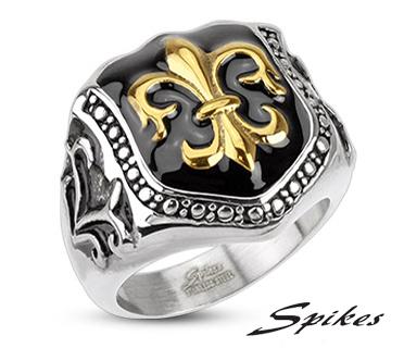 R-H2034 Мужской перстень «Spikes» из ювелирной стали с геральдической лилией