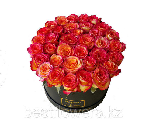 Коробка Maison Des Fleurs Хайт Мэджик