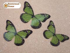 Набор бабочек из прозрачной пленки зеленый