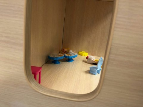 Детский стеллаж Домик