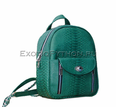 Рюкзак из кожи питона BG-315
