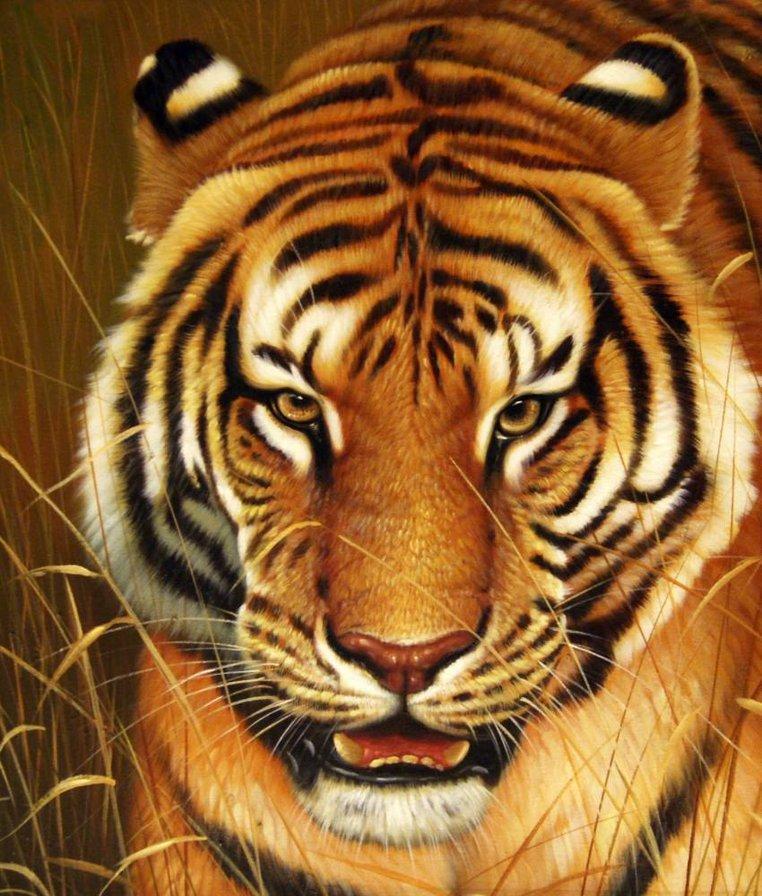 Картина раскраска по номерам 50x65 Тигр вблизи– купить в ...
