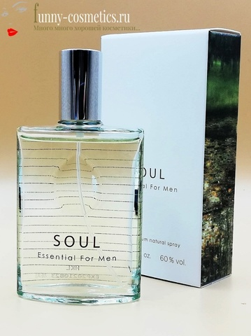 Туалетная вода THE FACE SHOP Soul Essential For Men