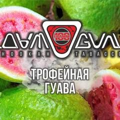 Табак Дымоган 100 г Трофейная Гуава