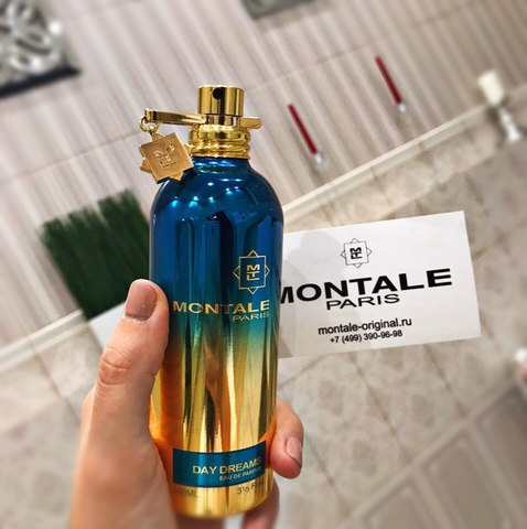 Montale Day Dreams.