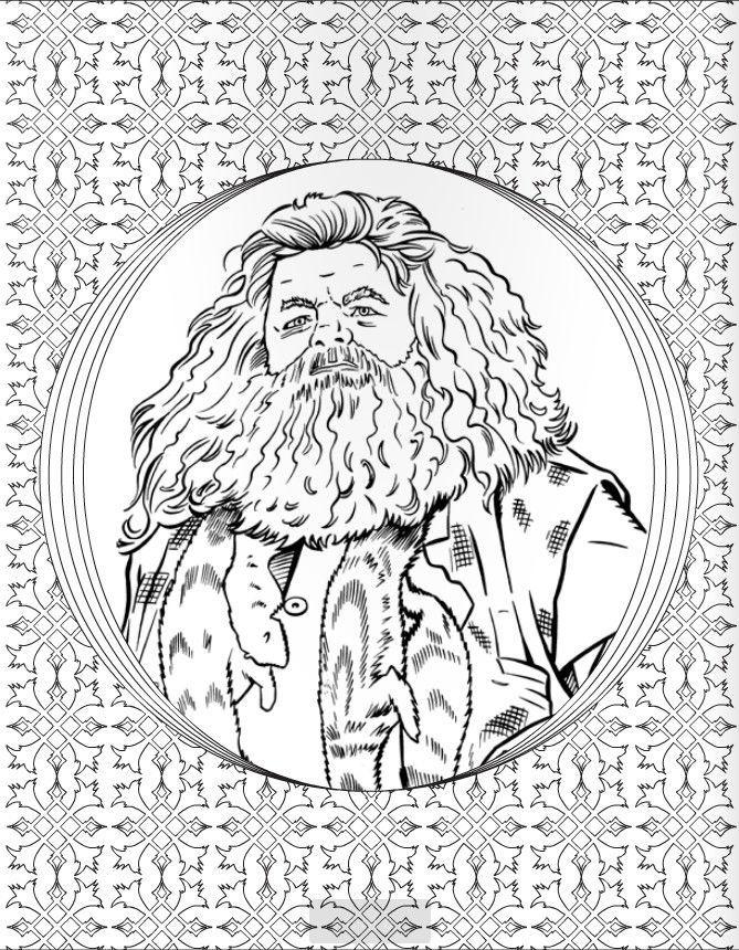 гарри поттер волшебная раскраска купить по выгодной цене