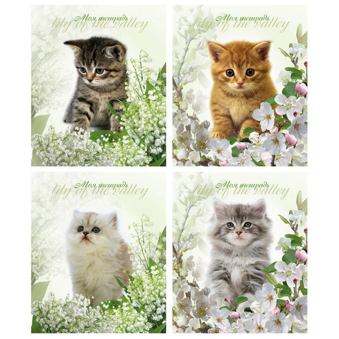 Тетрадь школьная 24л кл.Котята и цветы ТШ24К9478