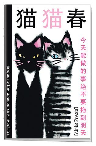 Тетрадь для записи иероглифов. Мал. формат  (Два кота)