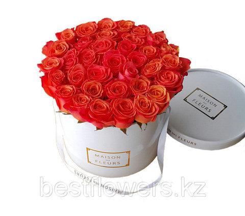 Коробка Maison Des Fleurs Оранж